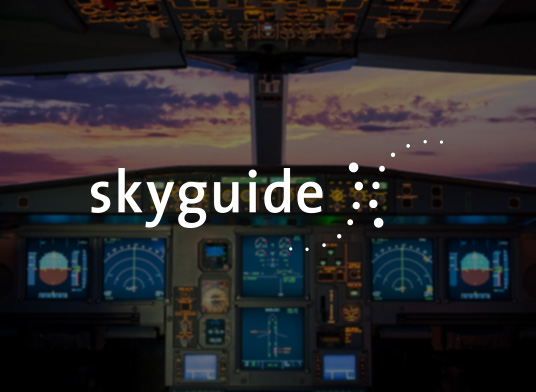 puppet case study skyguide logo